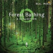 Forest Bathing - Various Artists